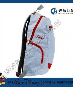 Computer backpacks with eva pad pocket